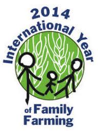IYFF 2014 logo